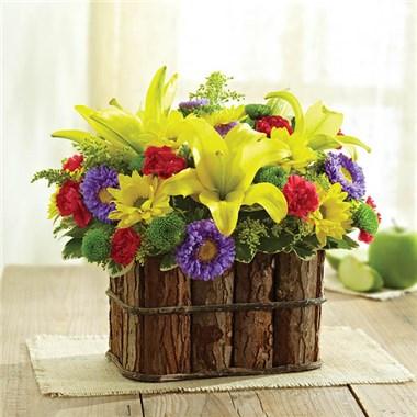 Spring flowers encino images flower decoration ideas 1 800 flowers suddenly spring conroys flowers encino 145697 mightylinksfo mightylinksfo