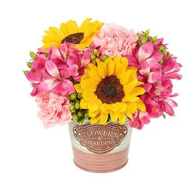 Spring flowers garden celebration conroys flowers encino spring flowers garden celebration mightylinksfo