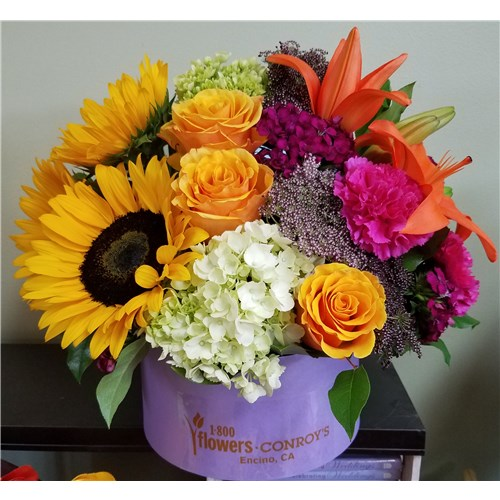 Conroys flowers encino ca same day delivery fresh flower gifts 20170818182400 mightylinksfo